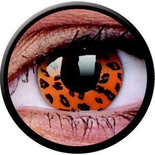 Yellow Leopard (Annuelles) (2 lentilles)