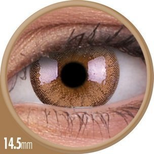 Cheerful Woody Brown (1-Mois) (2 lentilles)